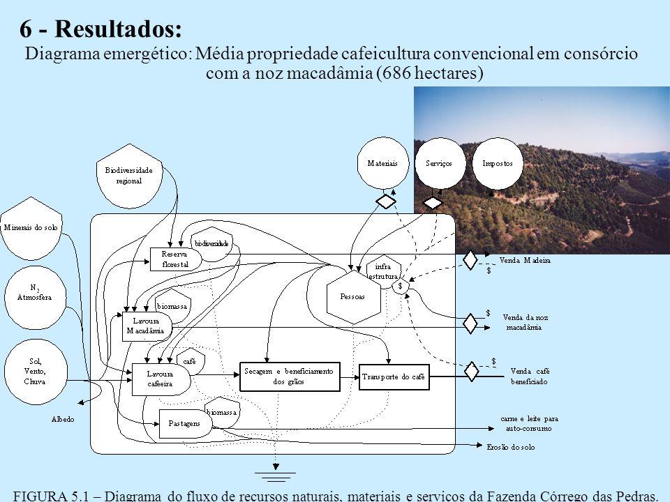 6 - Resultados: Diagrama emergético: Média propriedade cafeicultura convencional em consórcio com a noz macadâmia (686 hectares)