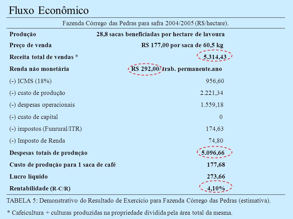 Fazenda Córrego das Pedras para safra 2004/2005 (R$/hectare).