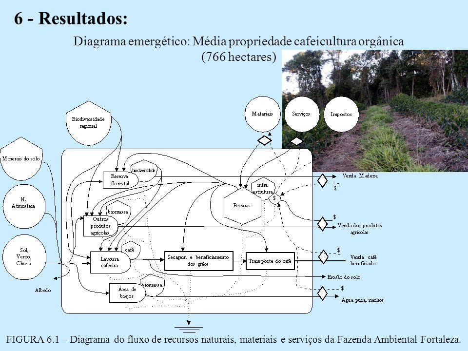 6 - Resultados: Diagrama emergético: Média propriedade cafeicultura orgânica (766 hectares)