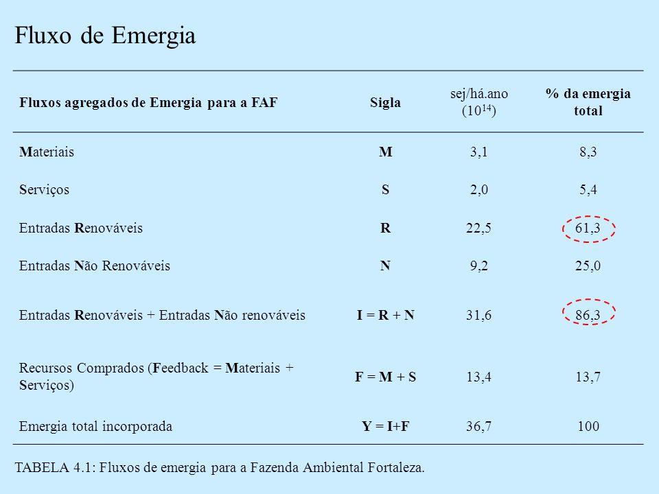 Fluxo de Emergia Fluxos agregados de Emergia para a FAF Sigla