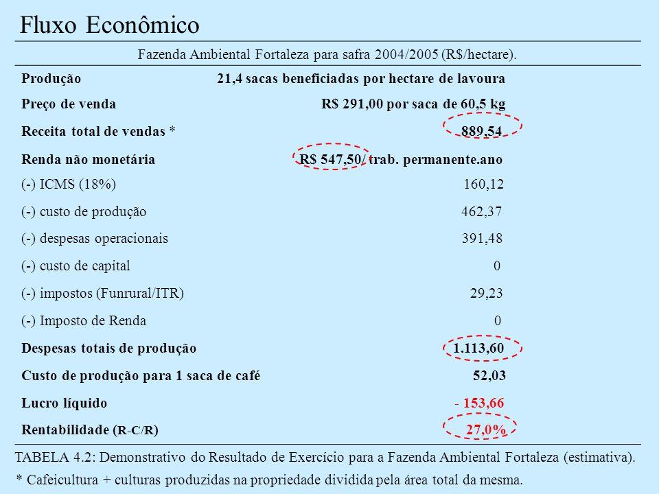 Fazenda Ambiental Fortaleza para safra 2004/2005 (R$/hectare).