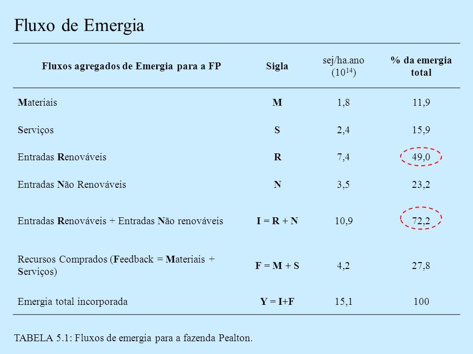 Fluxos agregados de Emergia para a FP