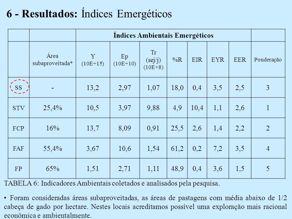 6 - Resultados: Índices Emergéticos