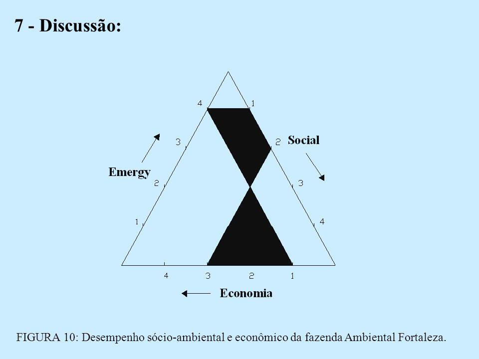 7 - Discussão: FIGURA 10: Desempenho sócio-ambiental e econômico da fazenda Ambiental Fortaleza.