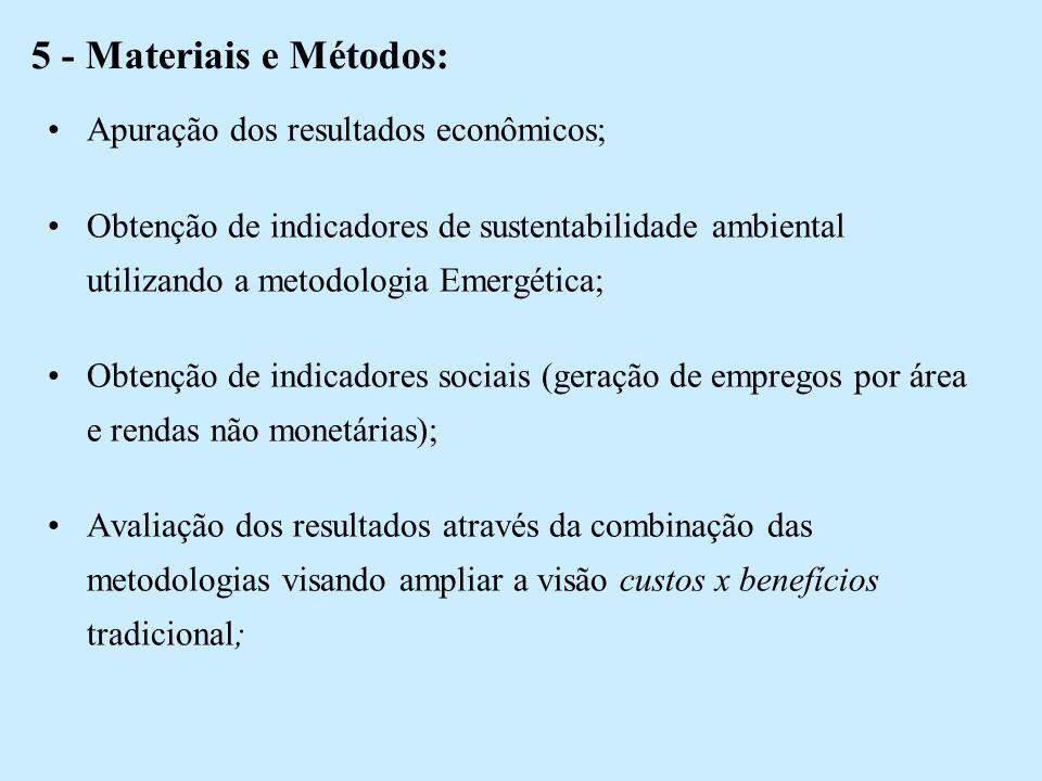 5 - Materiais e Métodos: Apuração dos resultados econômicos;