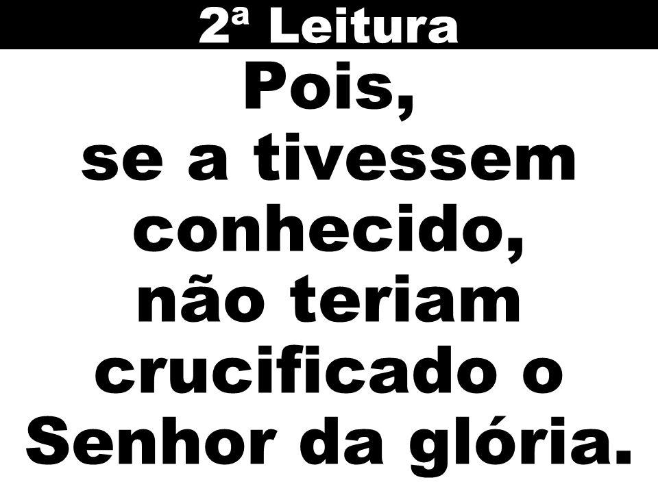 2ª Leitura Pois, se a tivessem conhecido, não teriam crucificado o Senhor da glória.