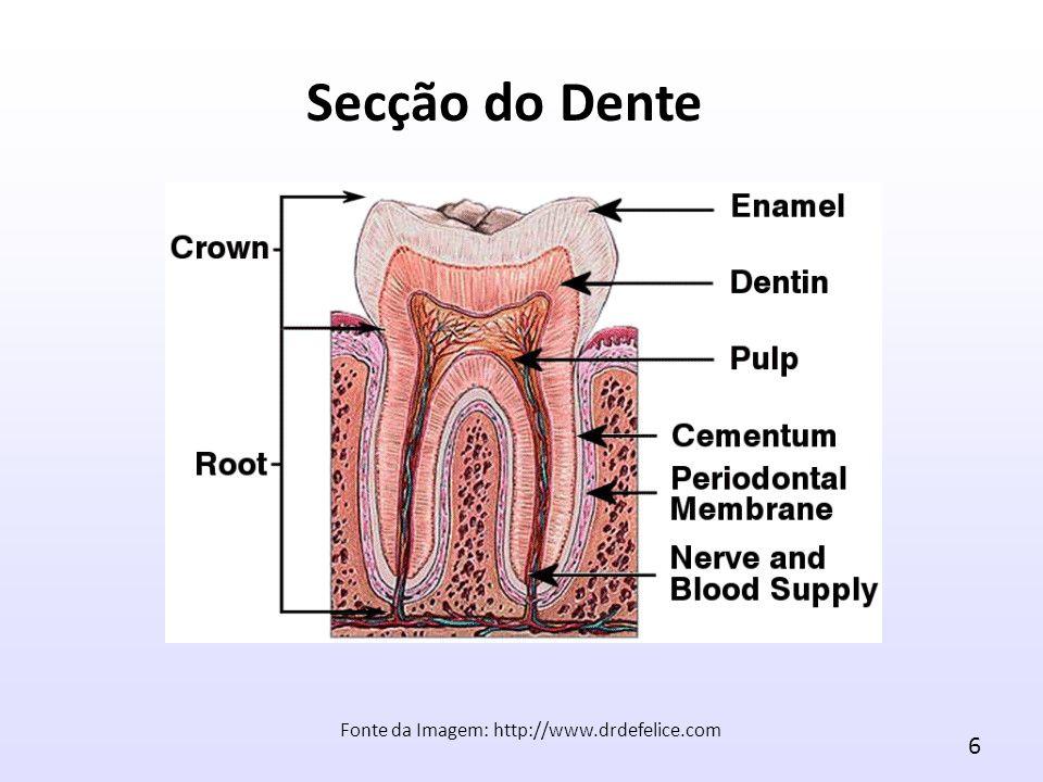 Fonte da Imagem: http://www.drdefelice.com