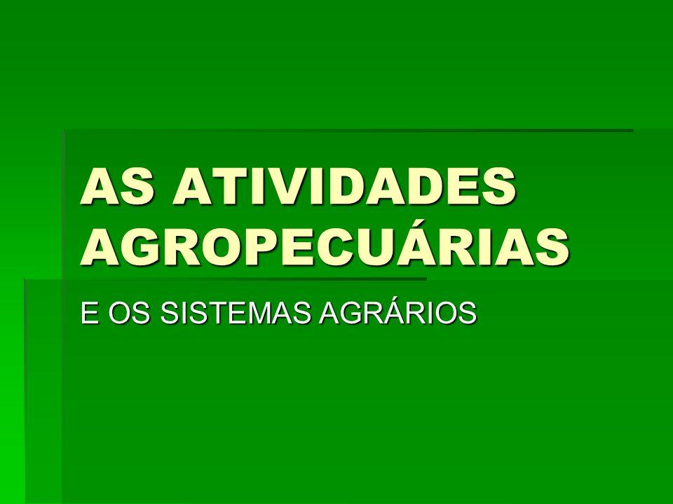 AS ATIVIDADES AGROPECUÁRIAS