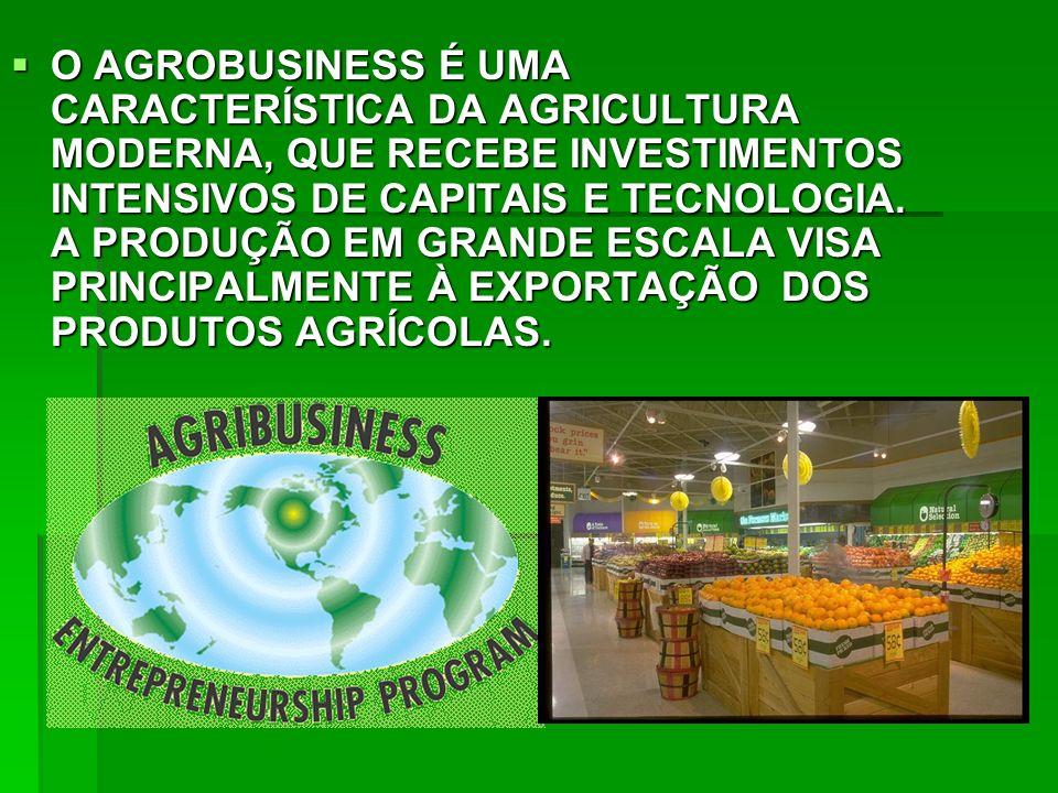 O AGROBUSINESS É UMA CARACTERÍSTICA DA AGRICULTURA MODERNA, QUE RECEBE INVESTIMENTOS INTENSIVOS DE CAPITAIS E TECNOLOGIA.