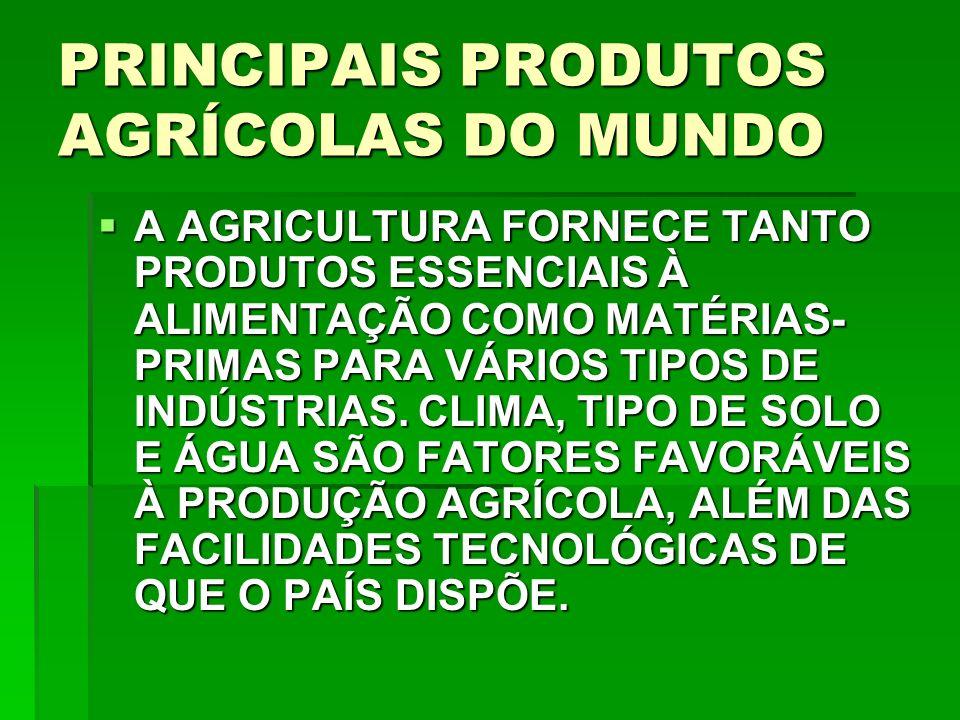 PRINCIPAIS PRODUTOS AGRÍCOLAS DO MUNDO