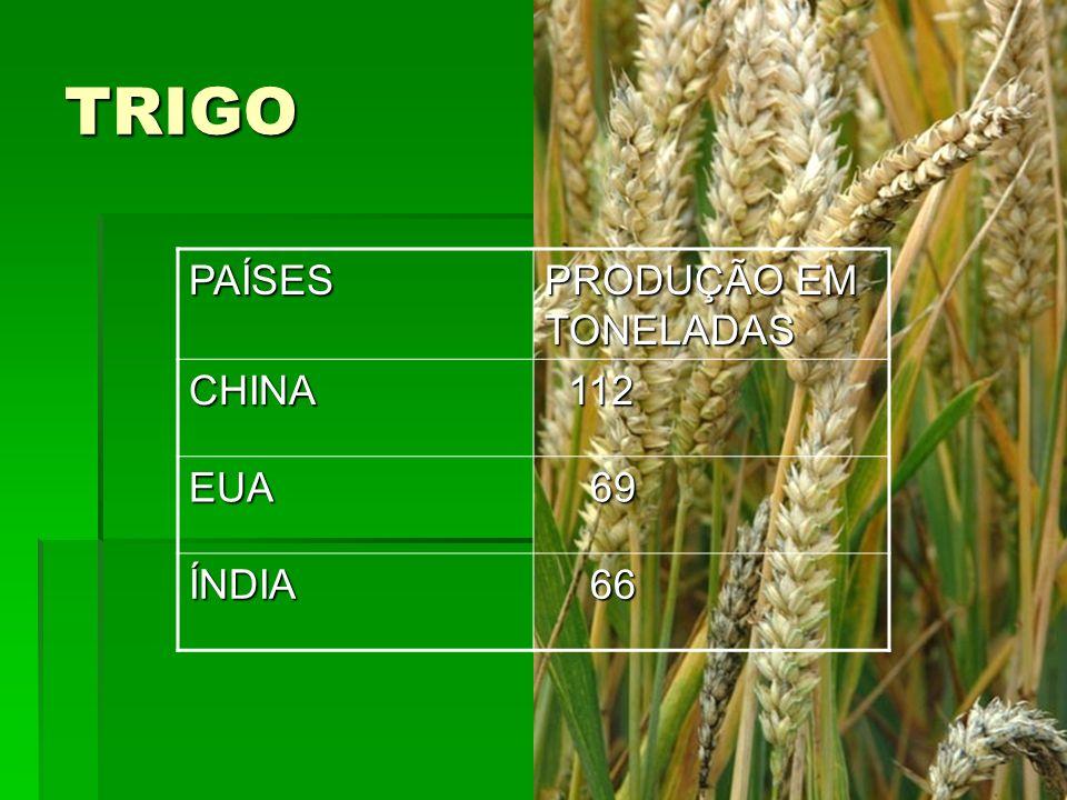 TRIGO PAÍSES PRODUÇÃO EM TONELADAS CHINA 112 EUA 69 ÍNDIA 66