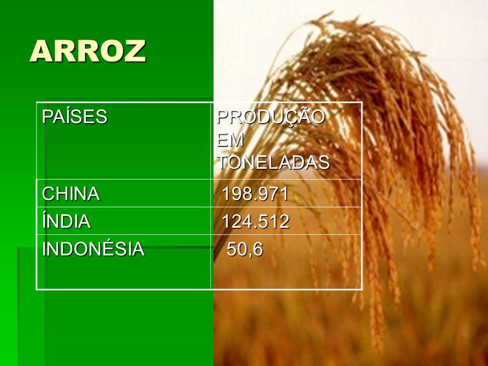 ARROZ PAÍSES PRODUÇÃO EM TONELADAS CHINA 198.971 ÍNDIA 124.512