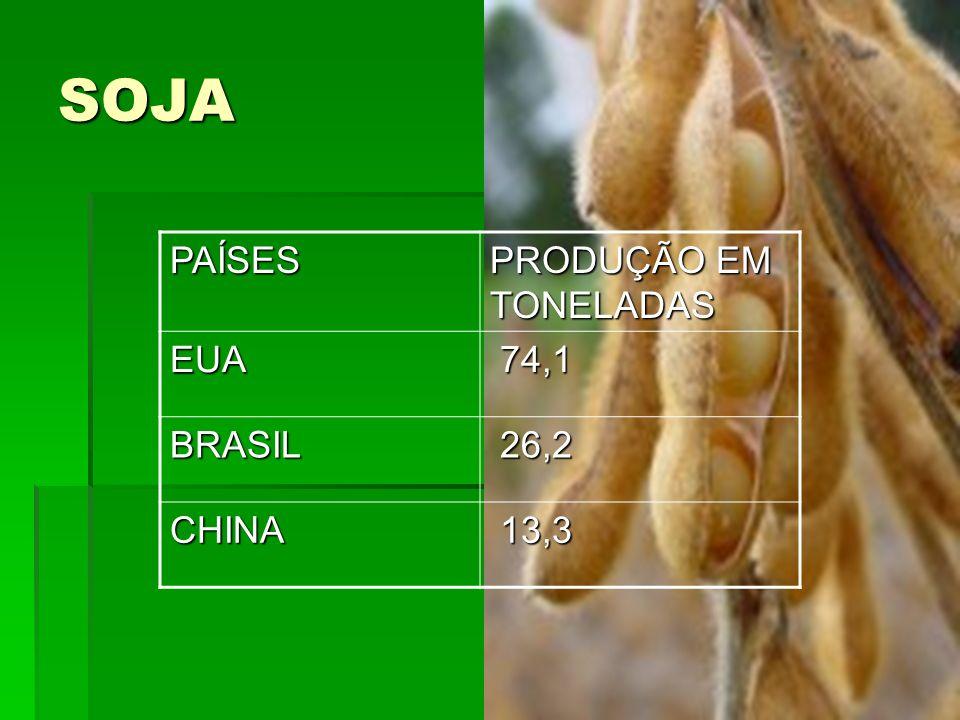SOJA PAÍSES PRODUÇÃO EM TONELADAS EUA 74,1 BRASIL 26,2 CHINA 13,3