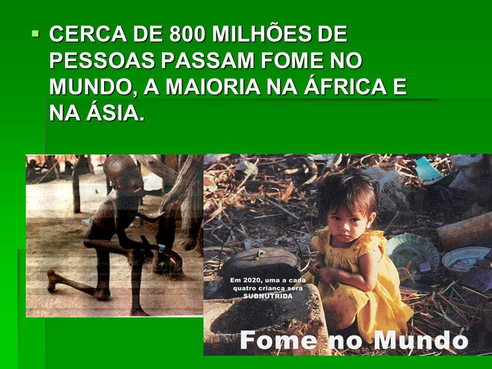 CERCA DE 800 MILHÕES DE PESSOAS PASSAM FOME NO MUNDO, A MAIORIA NA ÁFRICA E NA ÁSIA.