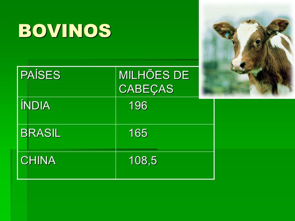 BOVINOS PAÍSES MILHÕES DE CABEÇAS ÍNDIA 196 BRASIL 165 CHINA 108,5