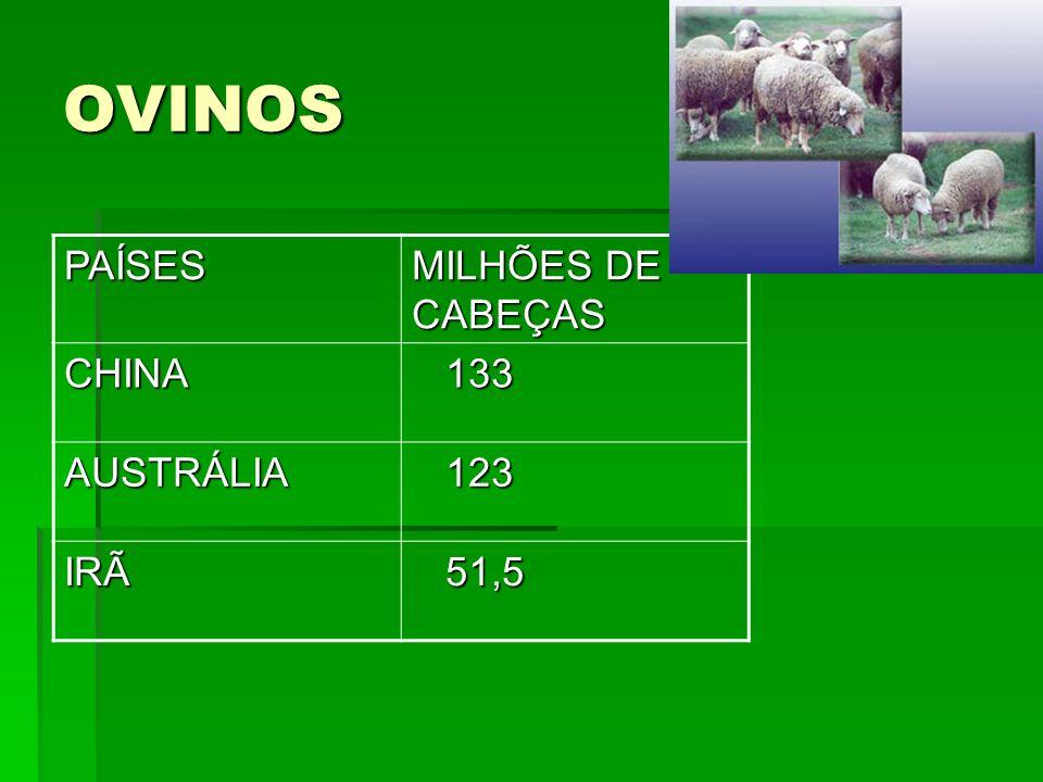OVINOS PAÍSES MILHÕES DE CABEÇAS CHINA 133 AUSTRÁLIA 123 IRÃ 51,5