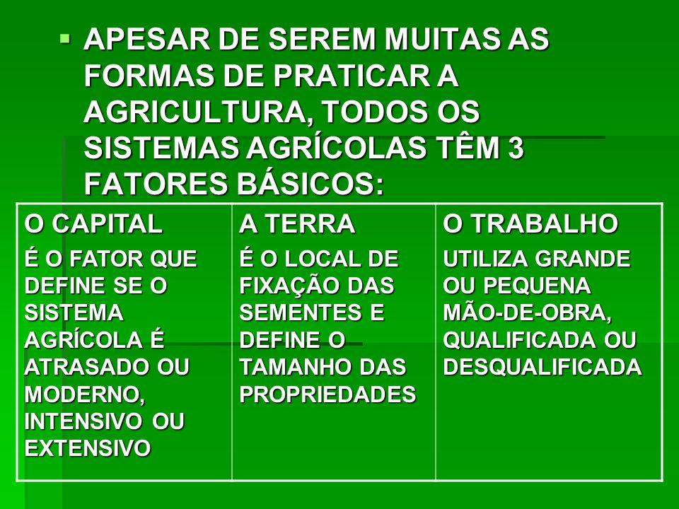 APESAR DE SEREM MUITAS AS FORMAS DE PRATICAR A AGRICULTURA, TODOS OS SISTEMAS AGRÍCOLAS TÊM 3 FATORES BÁSICOS: