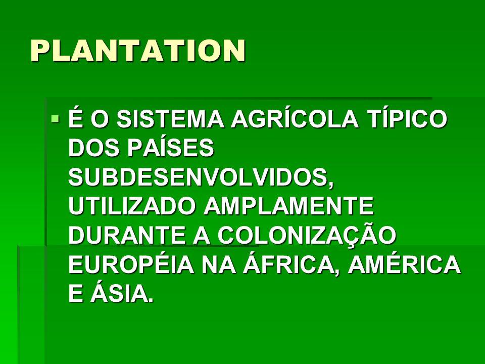 PLANTATION É O SISTEMA AGRÍCOLA TÍPICO DOS PAÍSES SUBDESENVOLVIDOS, UTILIZADO AMPLAMENTE DURANTE A COLONIZAÇÃO EUROPÉIA NA ÁFRICA, AMÉRICA E ÁSIA.