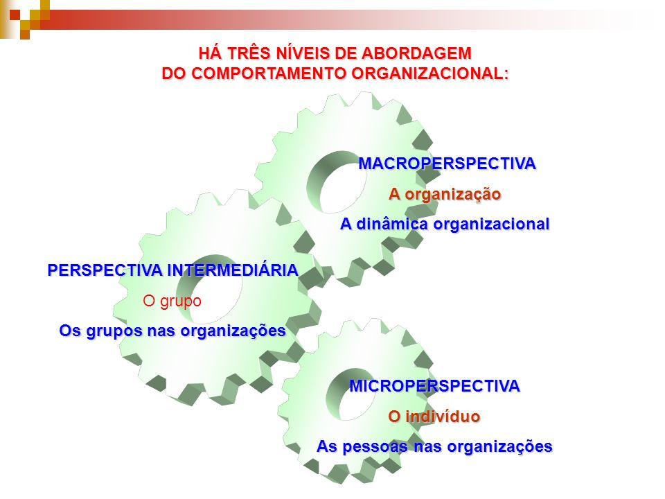 HÁ TRÊS NÍVEIS DE ABORDAGEM DO COMPORTAMENTO ORGANIZACIONAL: