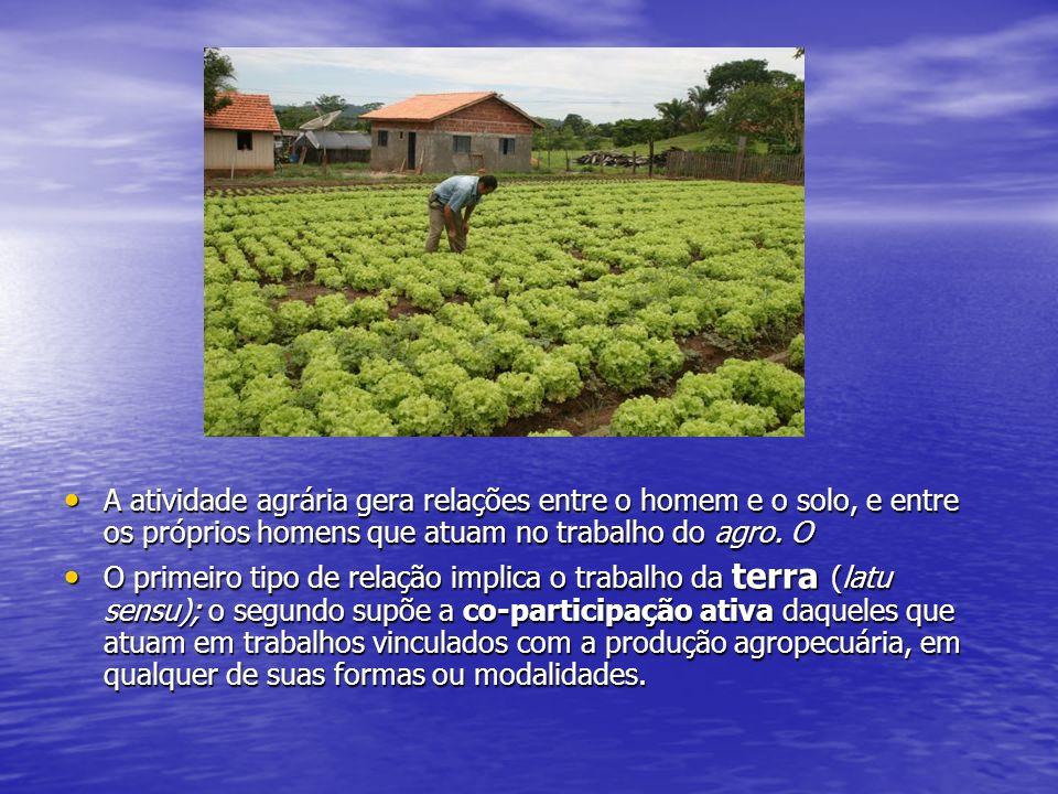 A atividade agrária gera relações entre o homem e o solo, e entre os próprios homens que atuam no trabalho do agro. O