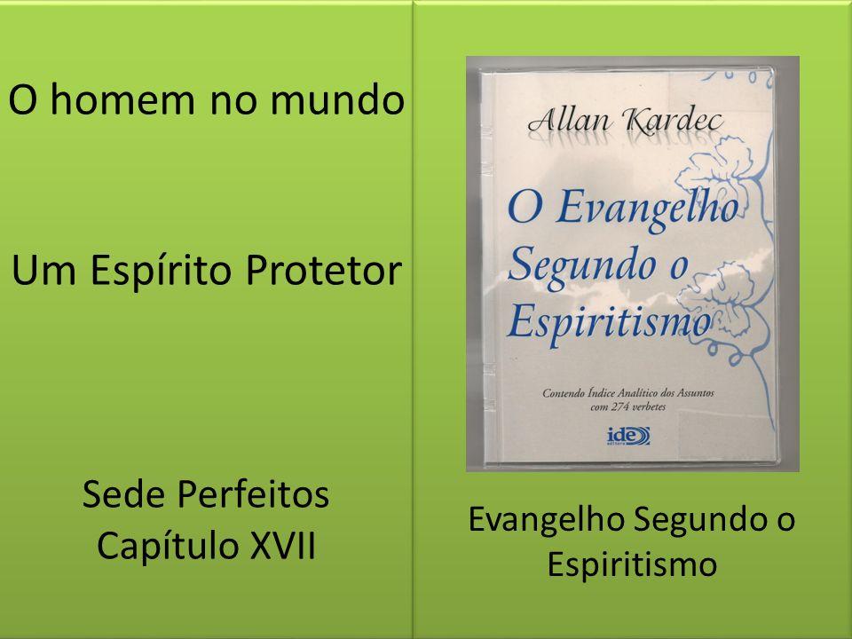 O homem no mundo Um Espírito Protetor Sede Perfeitos Capítulo XVII