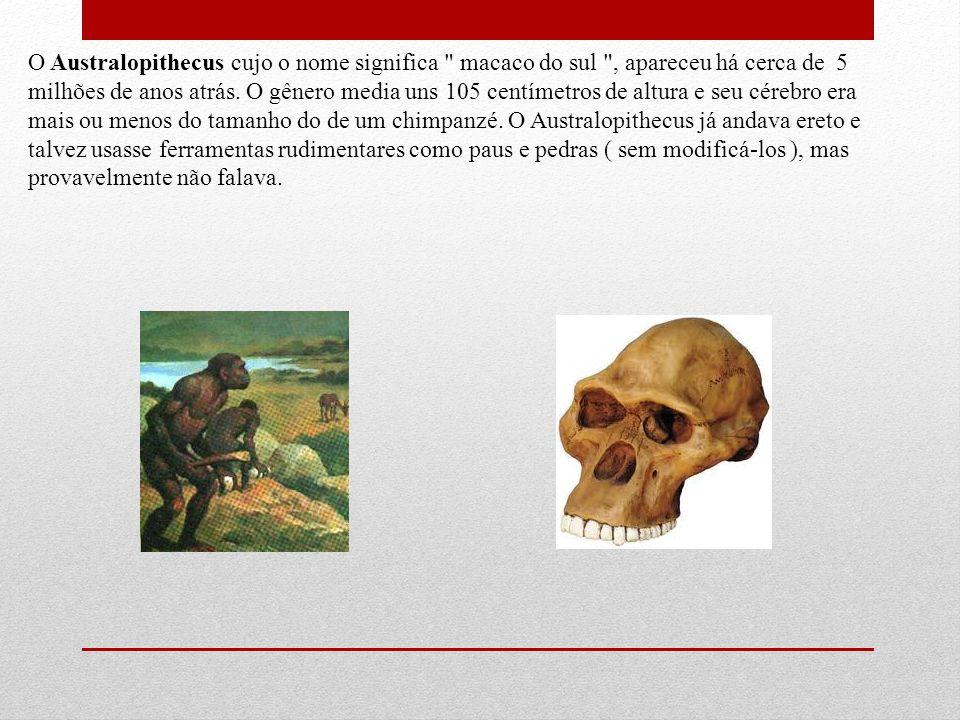 O Australopithecus cujo o nome significa macaco do sul , apareceu há cerca de 5 milhões de anos atrás.