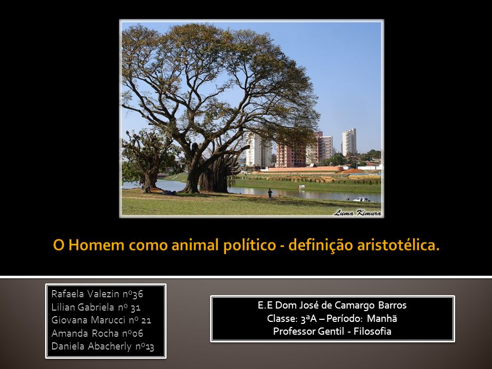 O Homem como animal político - definição aristotélica.