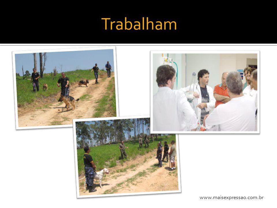 Trabalham www.maisexpressao.com.br
