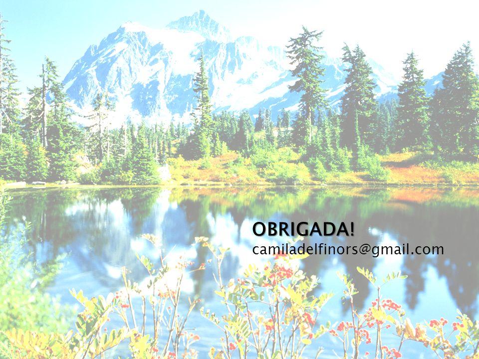OBRIGADA! OBRIGADA! camiladelfinors@gmail.com