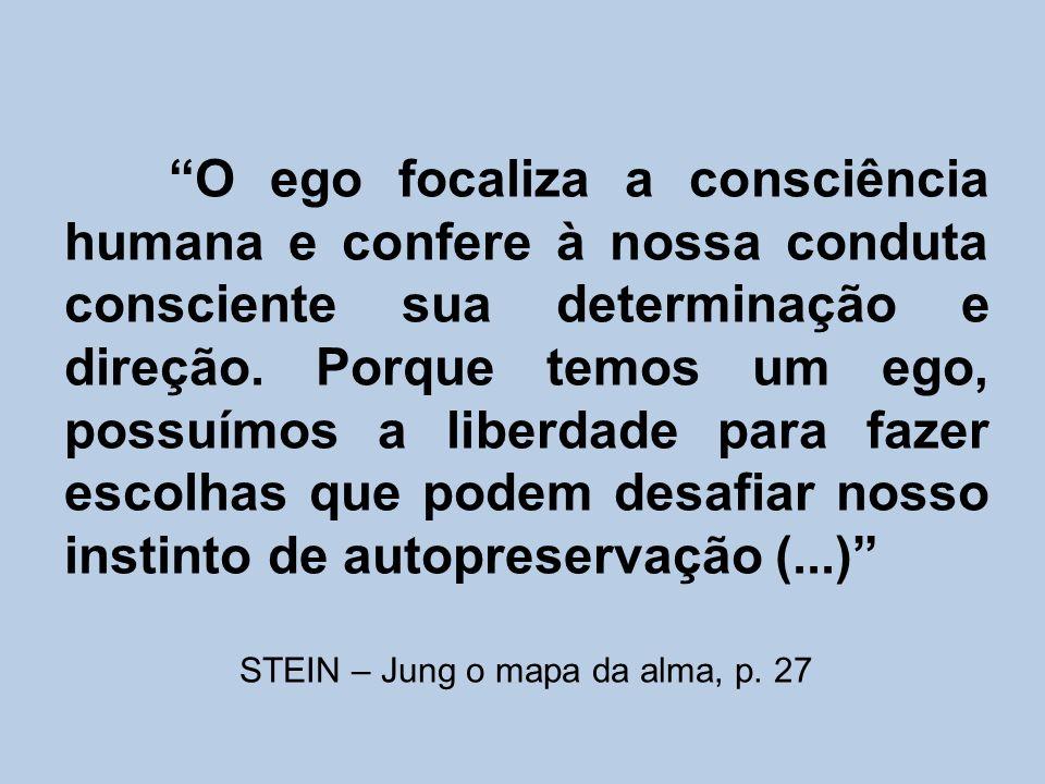 STEIN – Jung o mapa da alma, p. 27