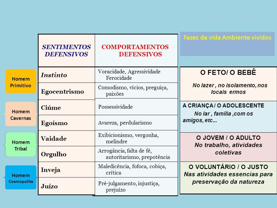 Fases da vida Ambiente vividos O FETO/ O BEBÊ