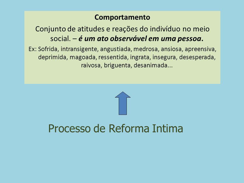 Processo de Reforma Intima