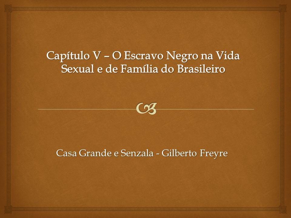 Capítulo V – O Escravo Negro na Vida Sexual e de Família do Brasileiro