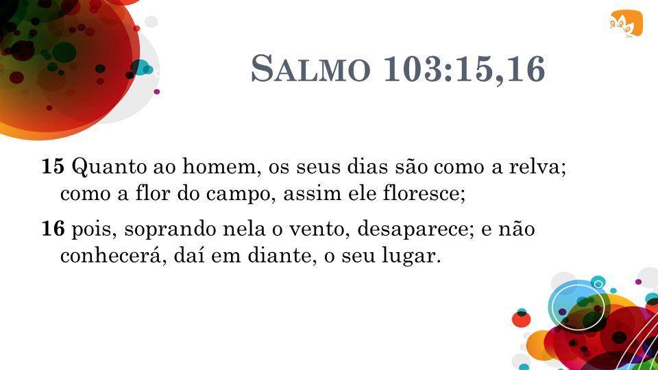 Salmo 103:15,16 15 Quanto ao homem, os seus dias são como a relva; como a flor do campo, assim ele floresce;