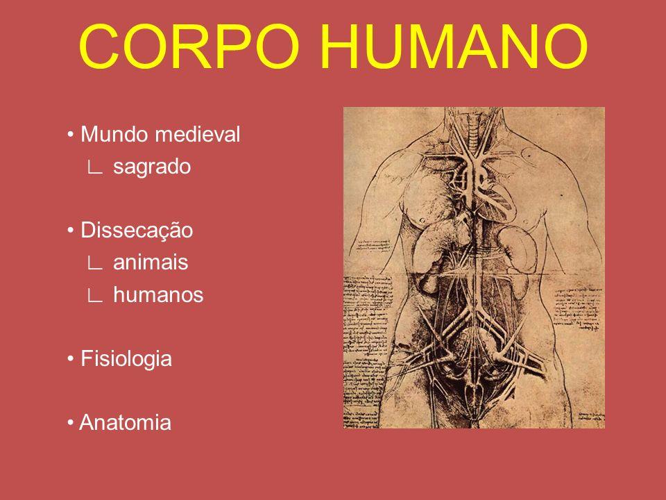 CORPO HUMANO • Mundo medieval ∟ sagrado • Dissecação ∟ animais ∟ humanos • Fisiologia • Anatomia