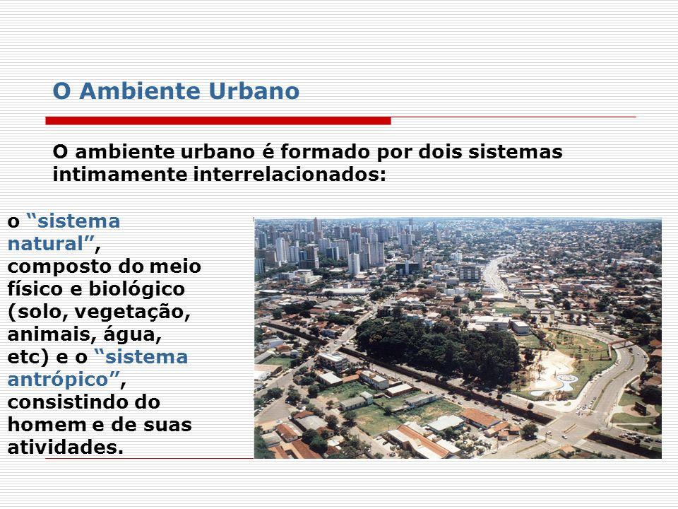 O Ambiente Urbano O ambiente urbano é formado por dois sistemas intimamente interrelacionados: