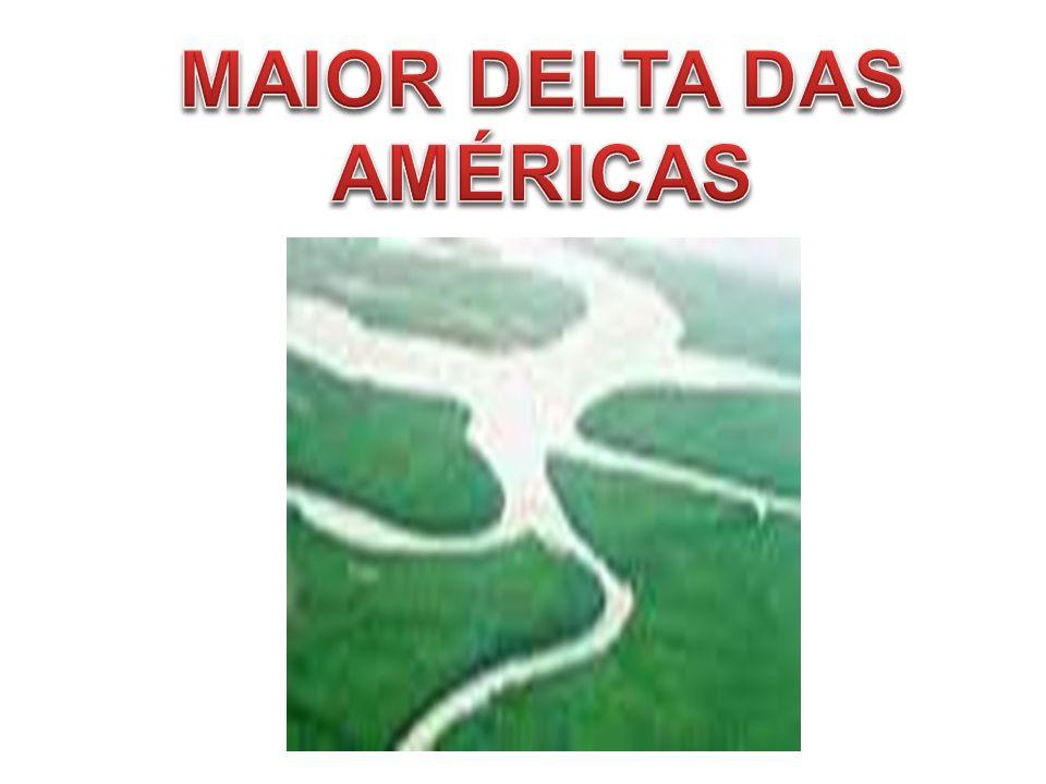 MAIOR DELTA DAS AMÉRICAS