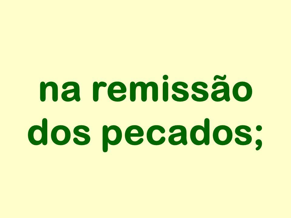 na remissão dos pecados;