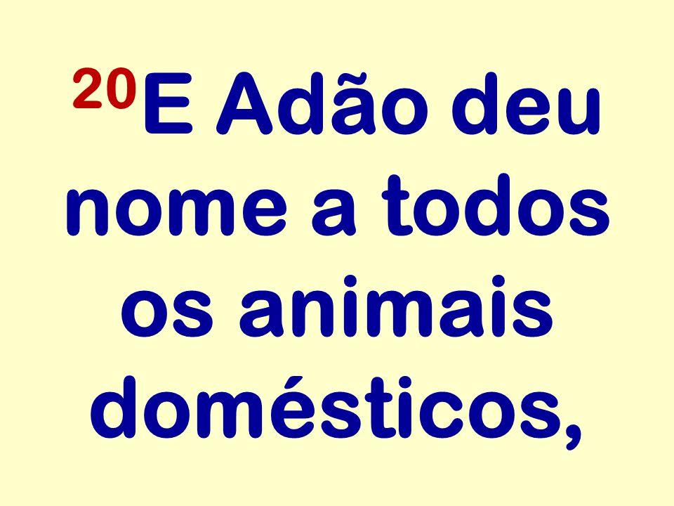 20E Adão deu nome a todos os animais domésticos,