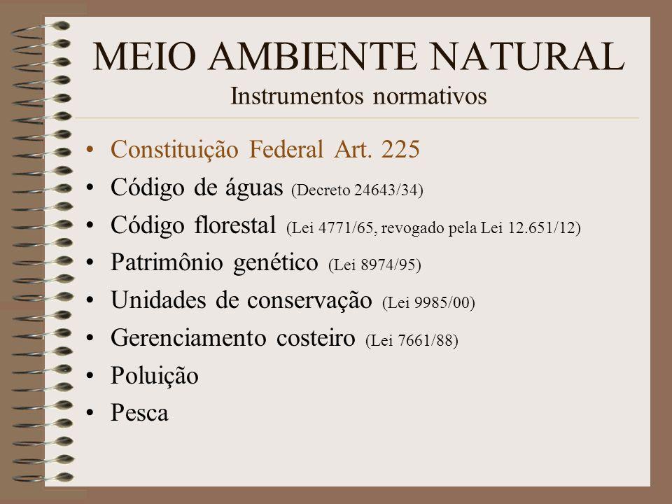 MEIO AMBIENTE NATURAL Instrumentos normativos