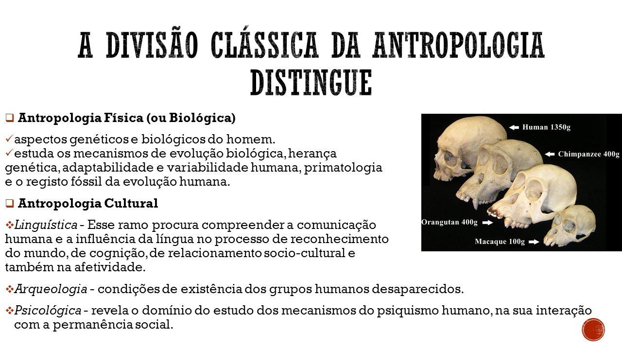 A divisão clássica da Antropologia distingue