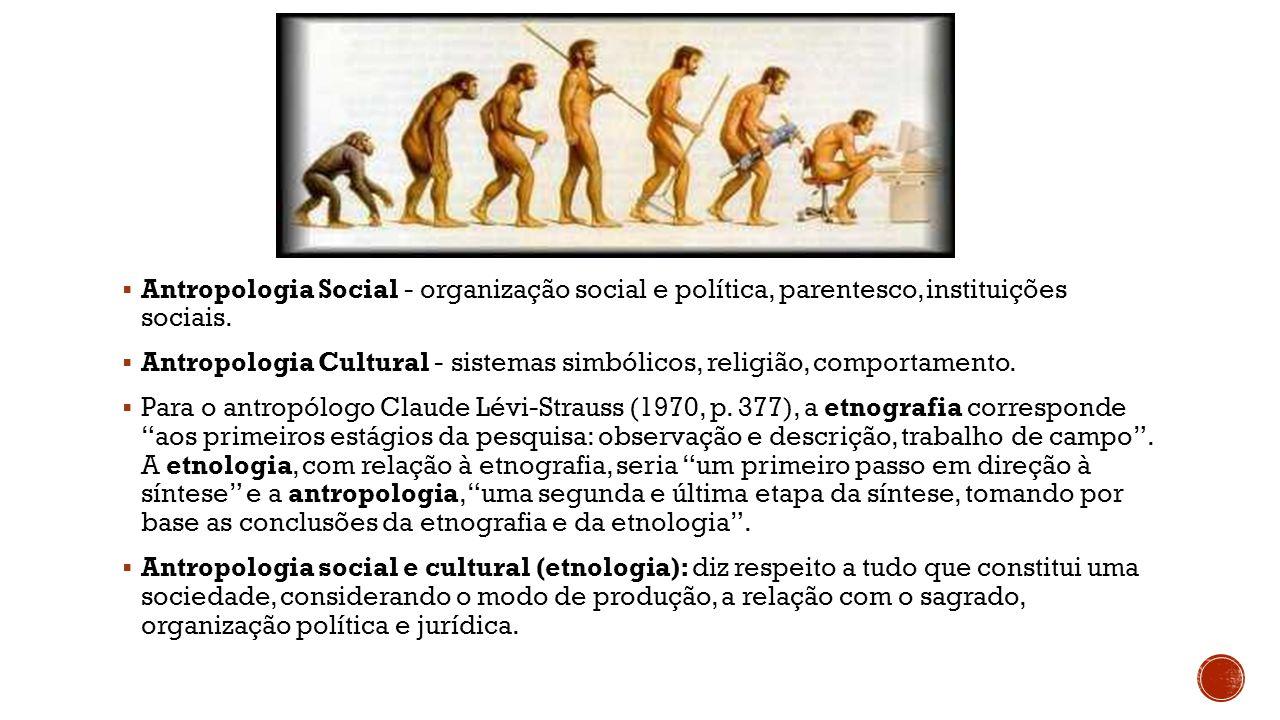 Antropologia Social - organização social e política, parentesco, instituições sociais.