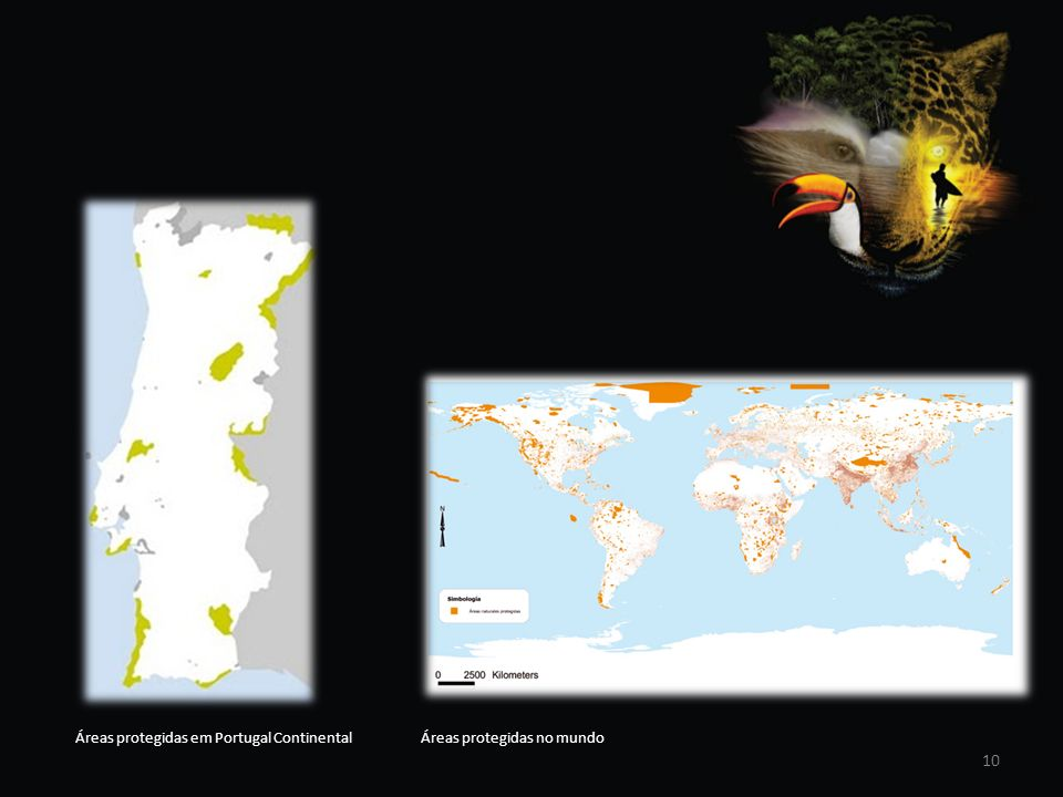 Áreas protegidas em Portugal Continental Áreas protegidas no mundo