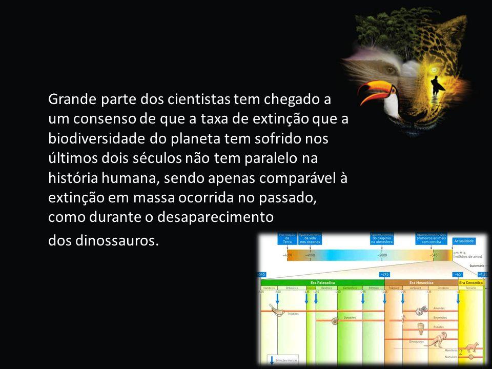 Grande parte dos cientistas tem chegado a um consenso de que a taxa de extinção que a biodiversidade do planeta tem sofrido nos últimos dois séculos não tem paralelo na história humana, sendo apenas comparável à extinção em massa ocorrida no passado, como durante o desaparecimento dos dinossauros.