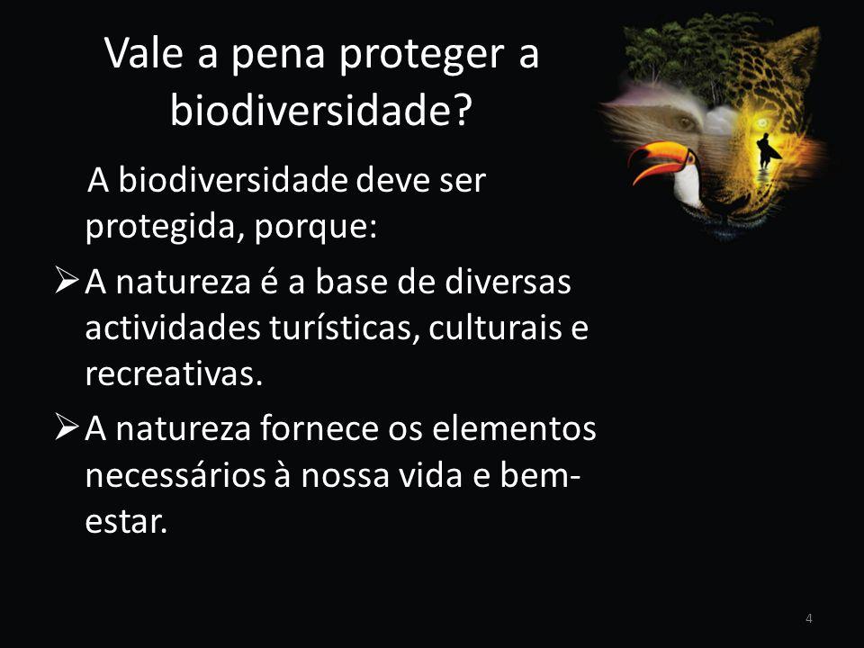 Vale a pena proteger a biodiversidade