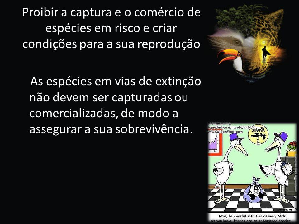 Proibir a captura e o comércio de espécies em risco e criar condições para a sua reprodução