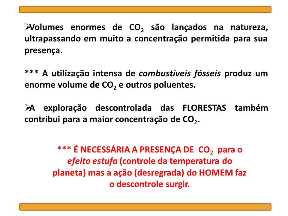 Volumes enormes de CO2 são lançados na natureza, ultrapassando em muito a concentração permitida para sua presença.