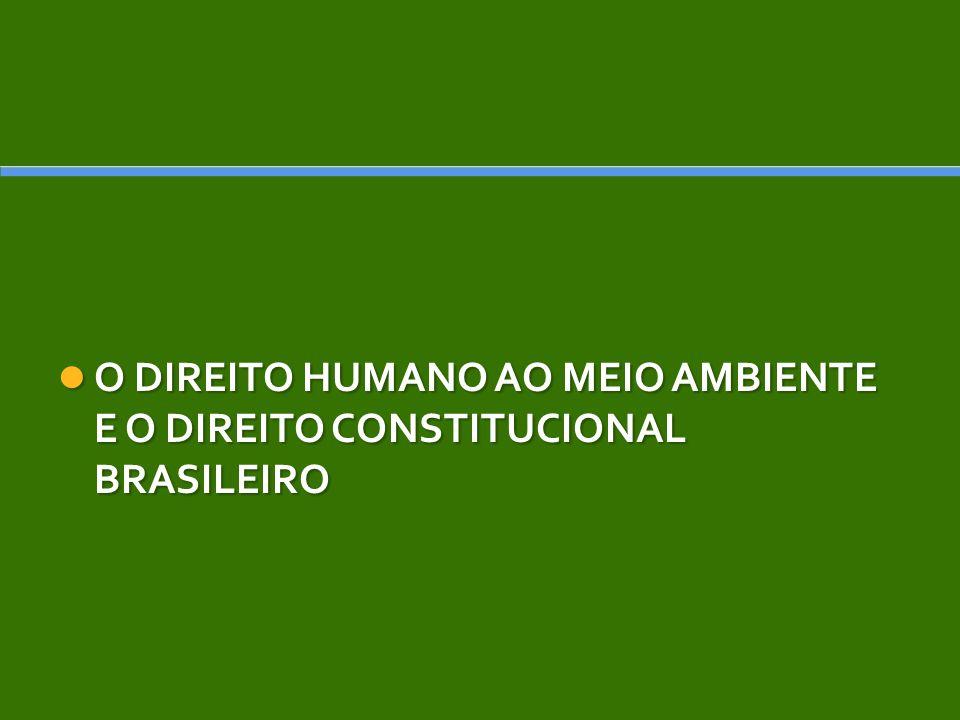 O DIREITO HUMANO AO MEIO AMBIENTE E O DIREITO CONSTITUCIONAL BRASILEIRO