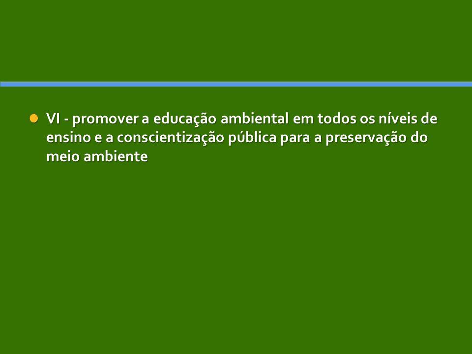 VI - promover a educação ambiental em todos os níveis de ensino e a conscientização pública para a preservação do meio ambiente