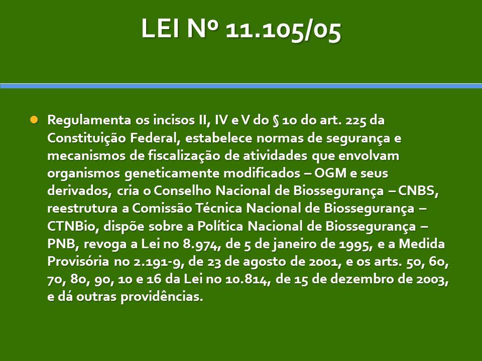 LEI Nº 11.105/05